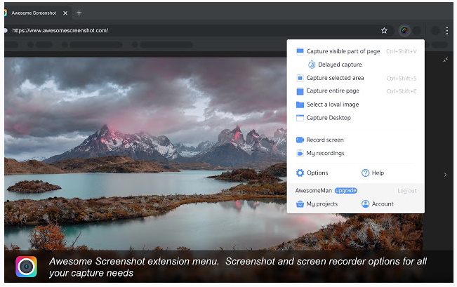 awesome screenshots extension