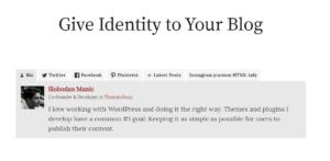 fanciest author box plugin