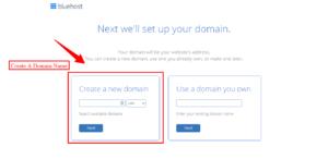 Bluehost register a domain