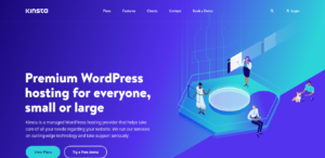 Kinsta-Managed WordPress Hosting