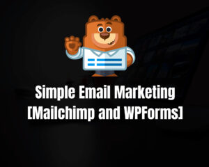 Read more about the article Simple Email Marketing [Mailchimp and WPForms]