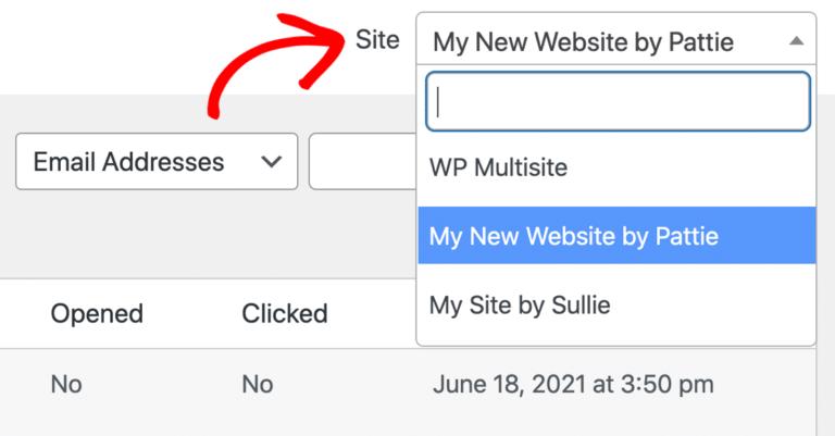 multisite-email-log-wordpress